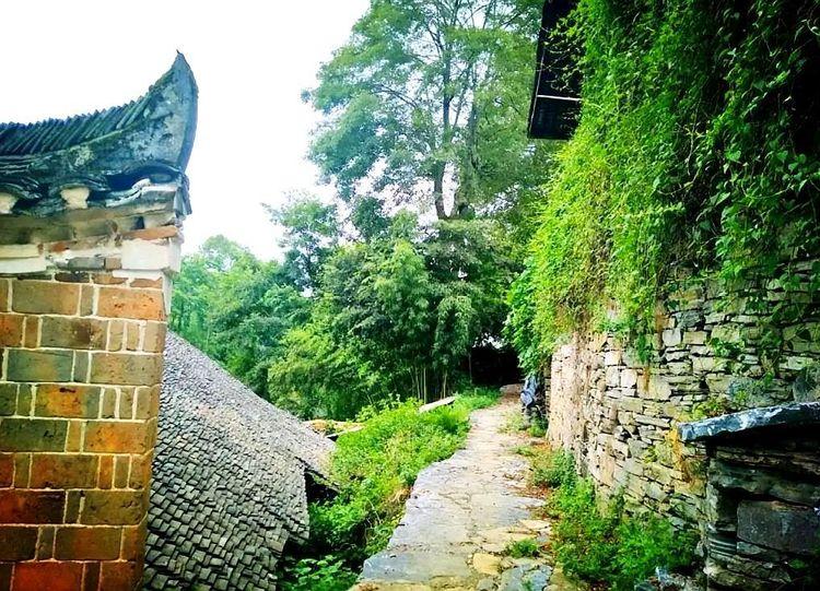 湘西一座神秘的古寨,至今已有上千年历史,寨里石墙能预测天气