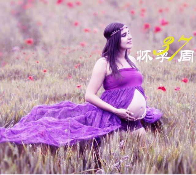怀孕第37周的建议和事实:宝宝足月了!网友:终于快熬到头了