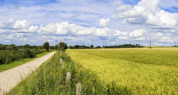 年产10万吨生物有机复合肥生产项目