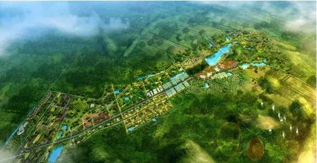农业规划设计与项目设计开发流程