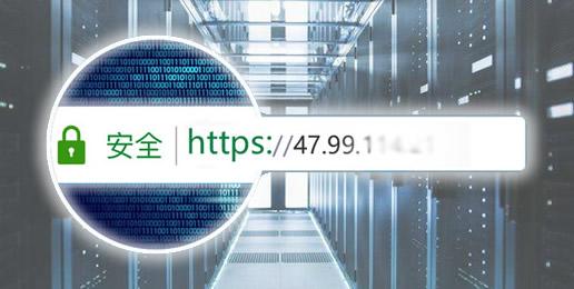 一张证书可以保护多个IP,同一张证书最多可以保护1000个IP地址