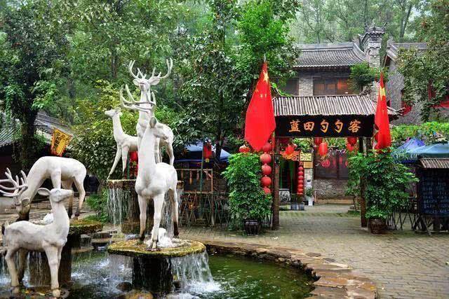 越南皇家娱乐场官网