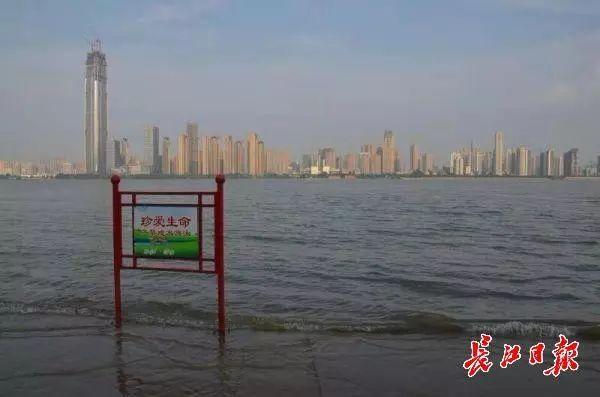 防汛 | 长江武汉关站水位突破25米设防水位,武汉启动防汛Ⅳ级(四级)应急响应