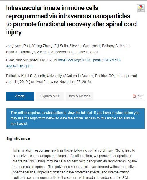 科学家在脊髓损伤发生后快速注射纳米粒子以防止瘫痪