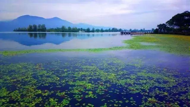 【交通】上海?西昌直飞航线明天开通!美景美食攻略在此