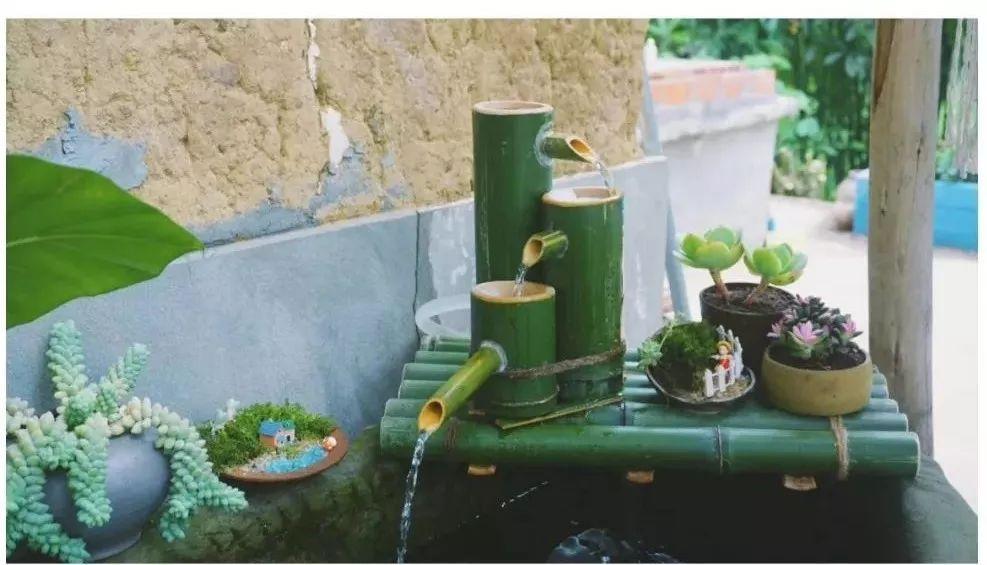 寻一处小院,种花养猫做手工,她在重庆过上了 小森 生活