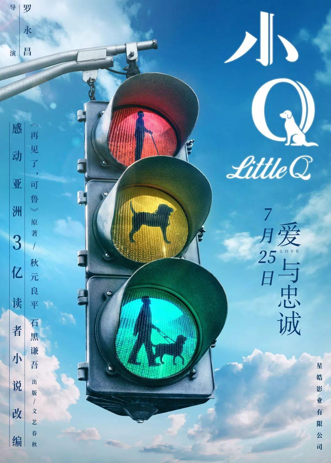 拥有导盲犬的我,想邀请你一起免费观看中国的 小Q