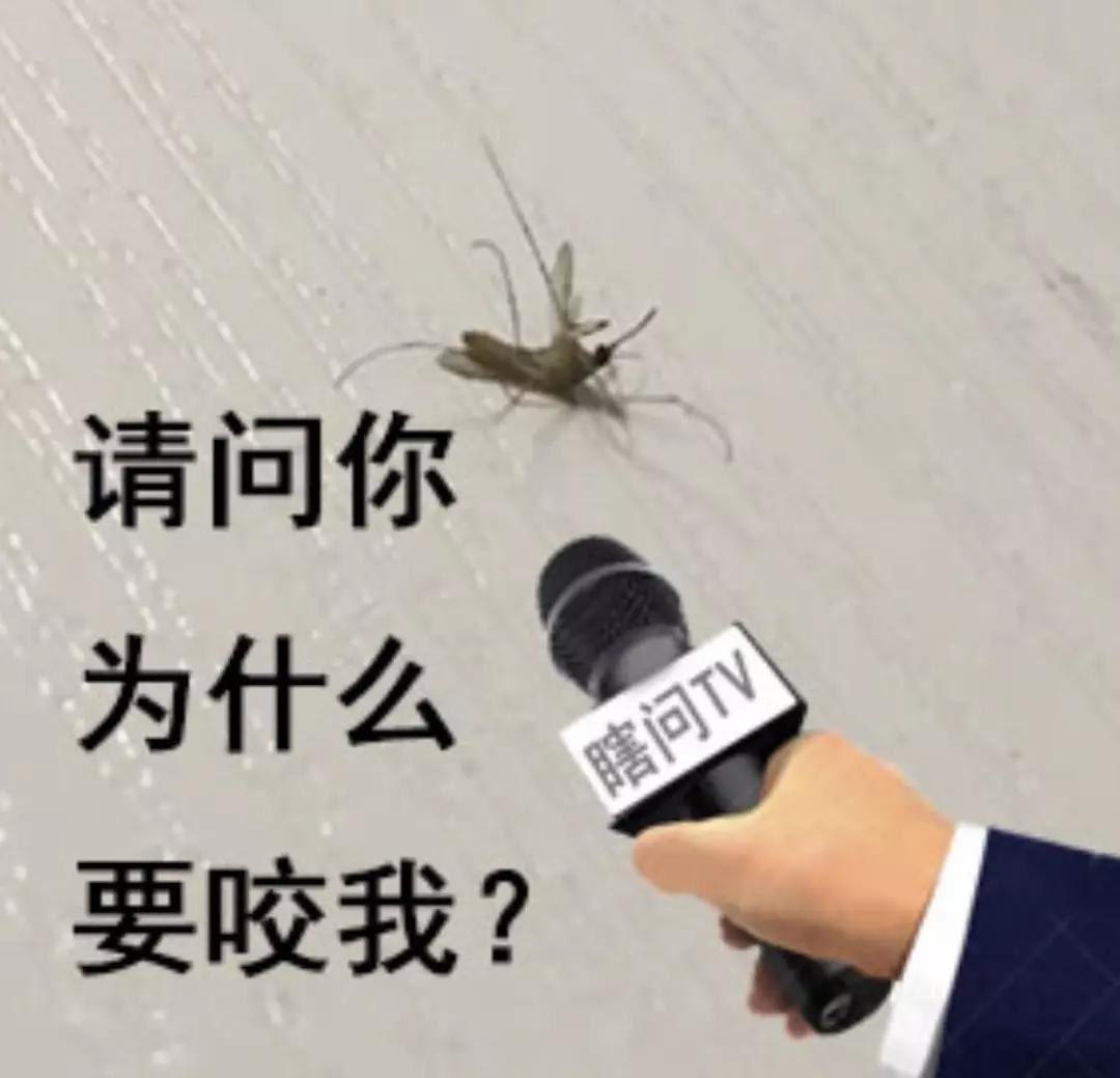 全国蚊子预报地图出炉,这几个省份是重灾区!