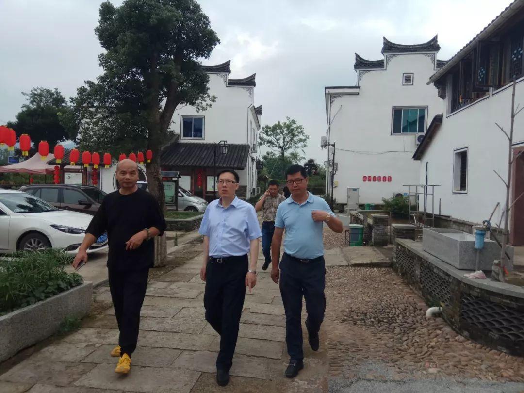 三问三服务| 方宪文局长调研金东、婺城乡村旅游工作