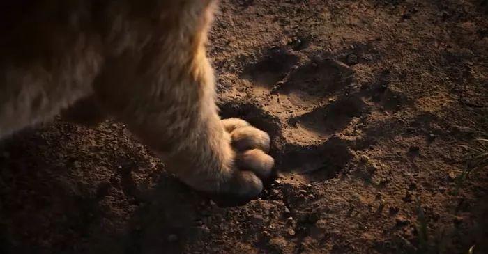 撸撸影院先锋影音_〖星美热映〗《狮子王》7月12日一起影院撸大猫!