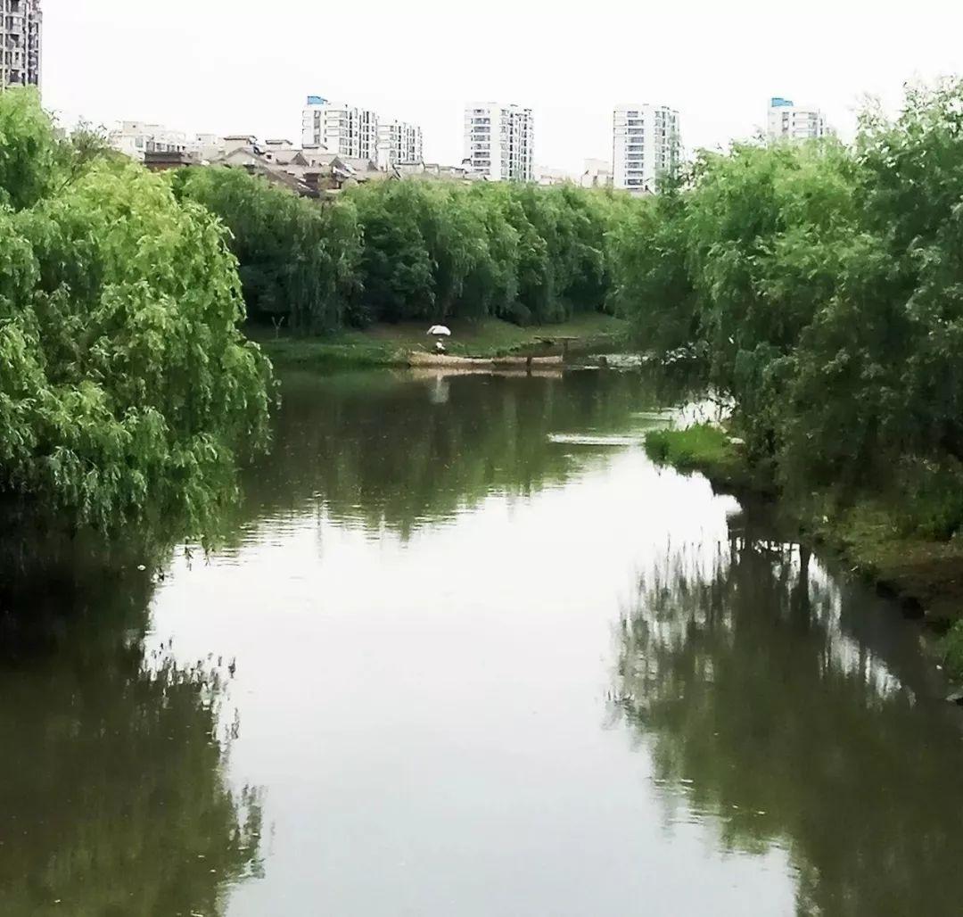 1701 - 上海·沙浦河夕阳 2016.12.4_阿敏八八_新浪博客