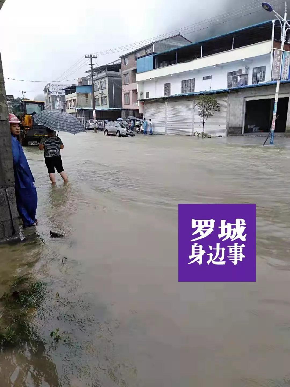 好撩!罗城至环江二级公路经过罗城这么多个地方!!_手机搜狐网