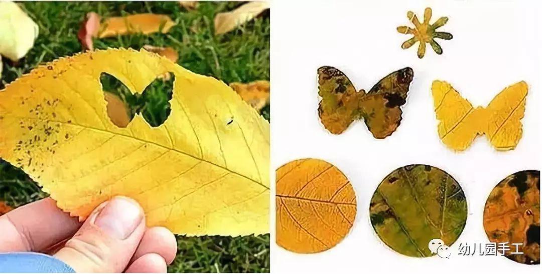 体育 正文  制作步骤:将叶子洗干净,晾干 树叶创意拼贴手工 树叶打孔