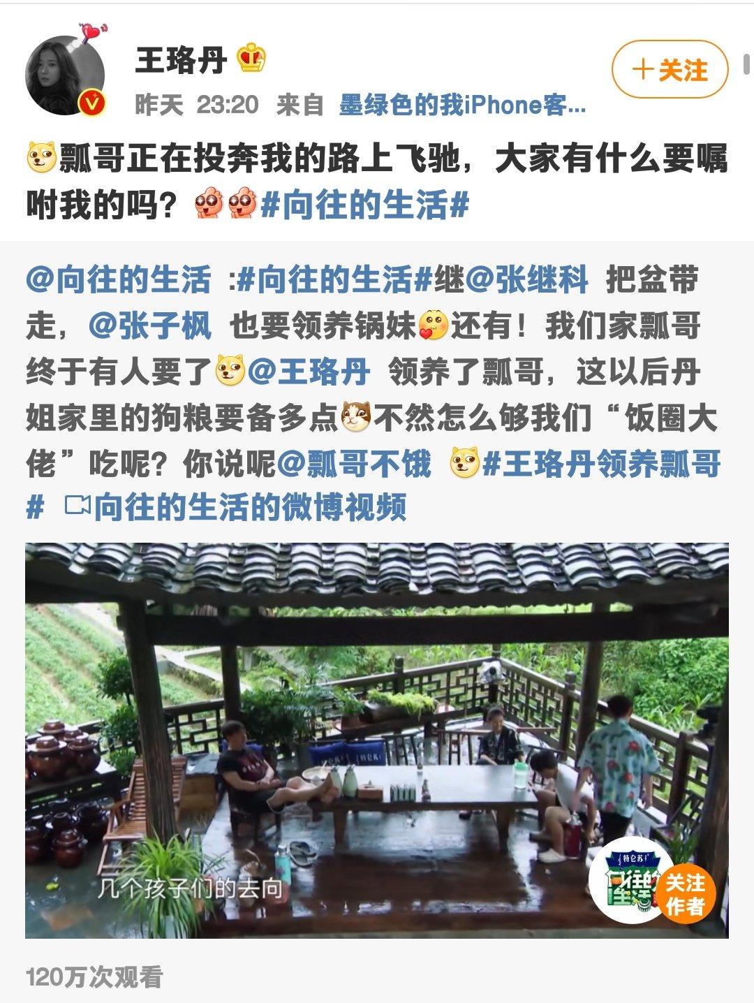东方og视讯app