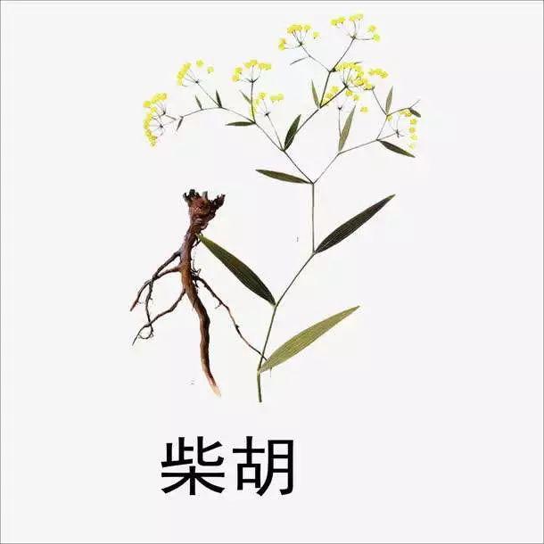 http://www.astonglobal.net/yishu/708480.html