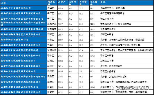 17图_图17:其他区级平台