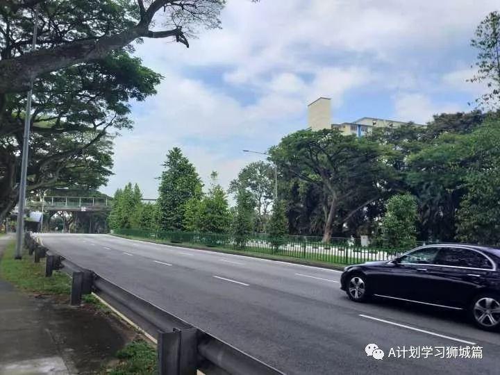 生活资讯_新加坡教育生活资讯(2019.07.14)