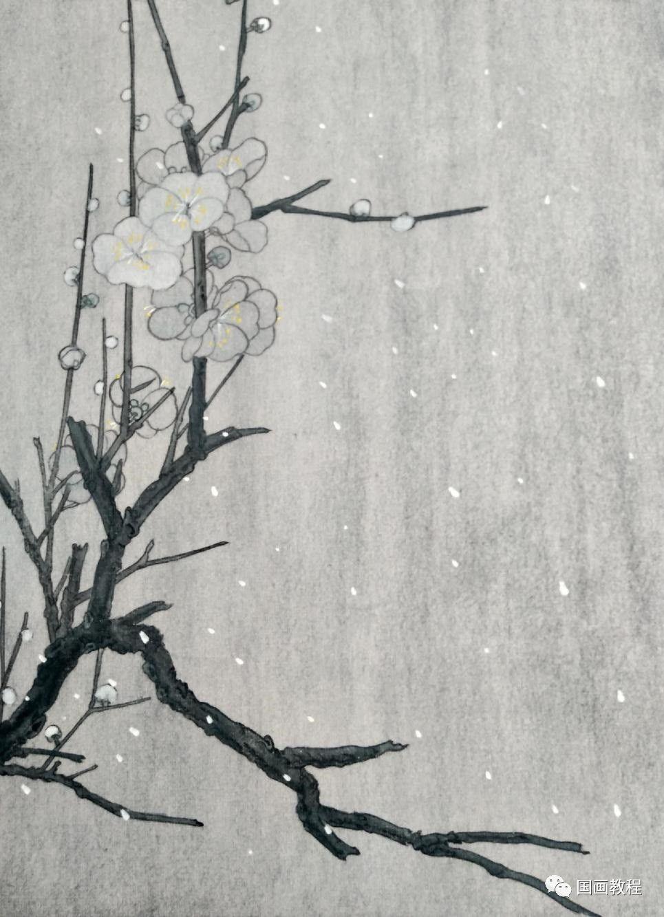 工笔画梅花,高清图片,免费下载 - 绘艺素材网