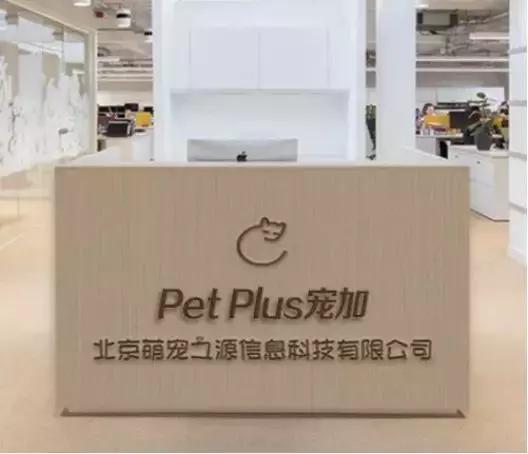 宠加再获500万美元融资,要做宠物行业最大独立零售商