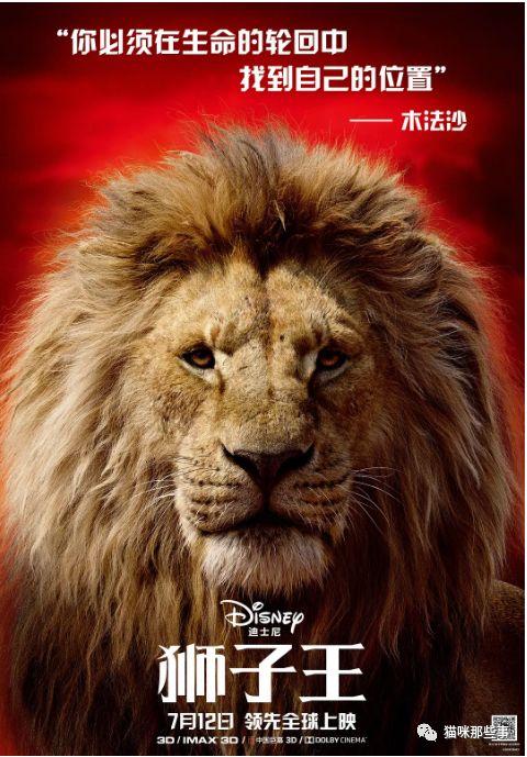 姥姥撸电影网_又可以在电影院里撸大猫了!狮子王真是又萌又燃!