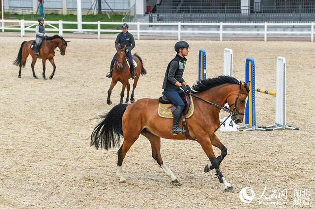 <b>探访武汉军运会马术赛场:马蹄入砂深度精确到毫米 专业马医院呵护赛马健康</b>