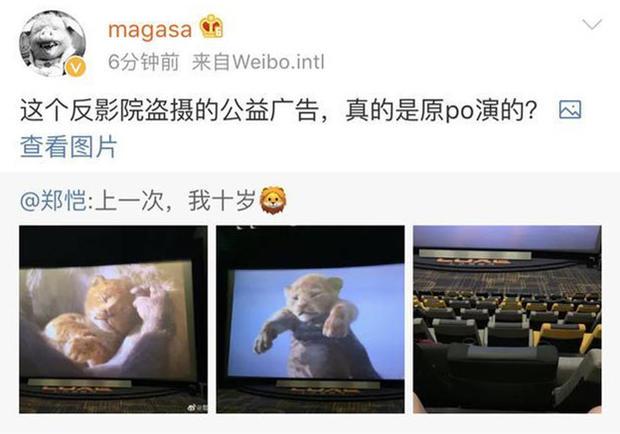 郑恺看《狮子王》拿起脚机摄屏收微专
