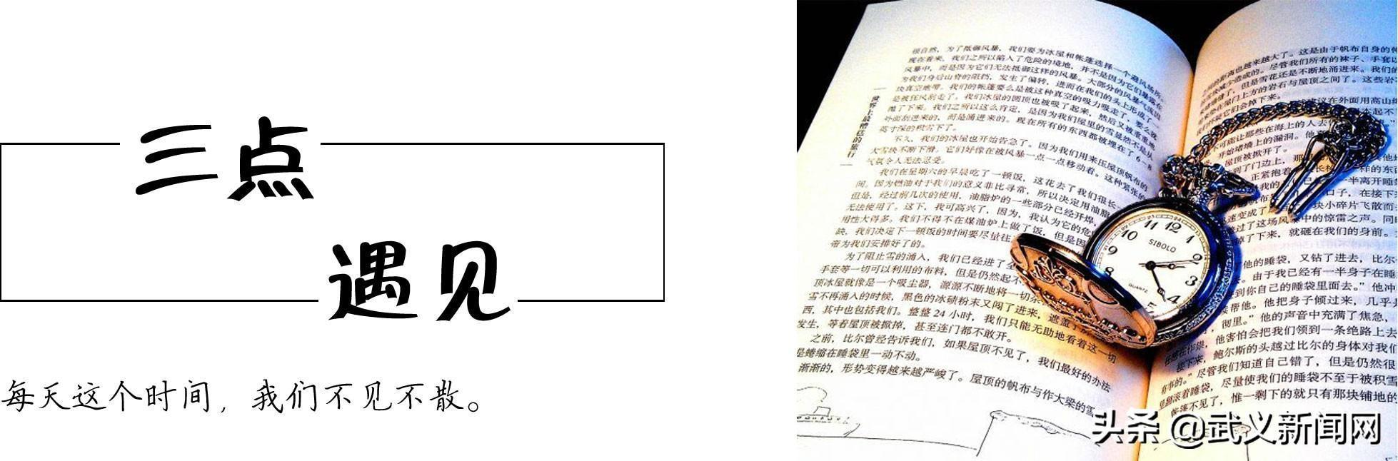 解放记忆——纪念永康、武义、磐安解放60周年