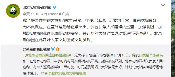 神吐槽 北京动物园游客拿石头砸大熊猫,园方提升场地硬件也别忘了追责扔石者