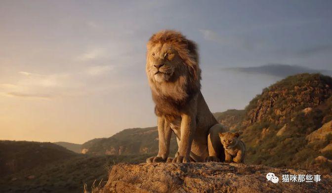 撸死了电影_又可以在电影院里撸大猫了!狮子王真是又萌又燃!