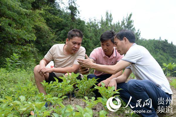http://www.lightbutler.cn/shehui/255877.html