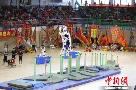 2019年广东省龙狮锦标赛开赛 155支龙狮队竞技
