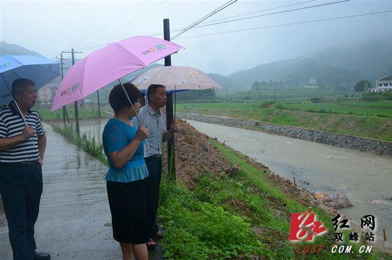 双峰县领导到荷叶镇检查防汛工作