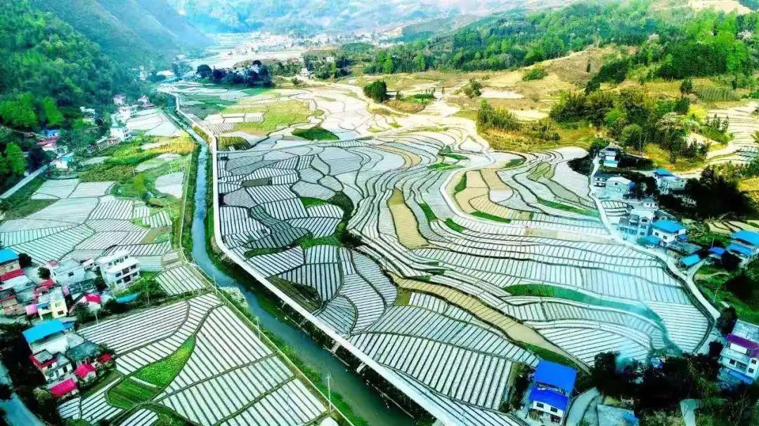 罗甸县 人口多少_罗甸县干河菜市场