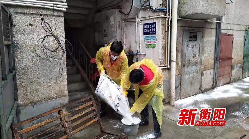"""雁峰区""""衡阳群众""""青年突击队参与灾后恢复工作"""