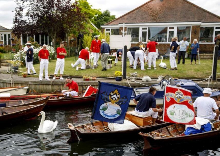 <b>英国女王有多少只天鹅?王室官员展开鹅口普查</b>