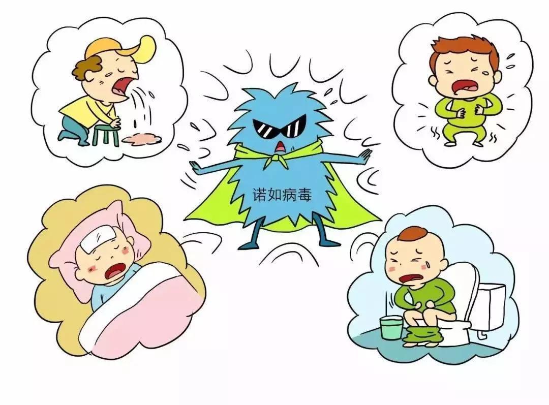 北京多人感染诺如病毒,家长孩子如何应对