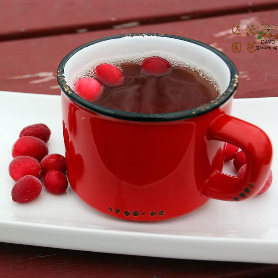 蔓越莓果汁的做法_蔓越莓果汁怎么做_蔓越莓果汁的... _美食天下