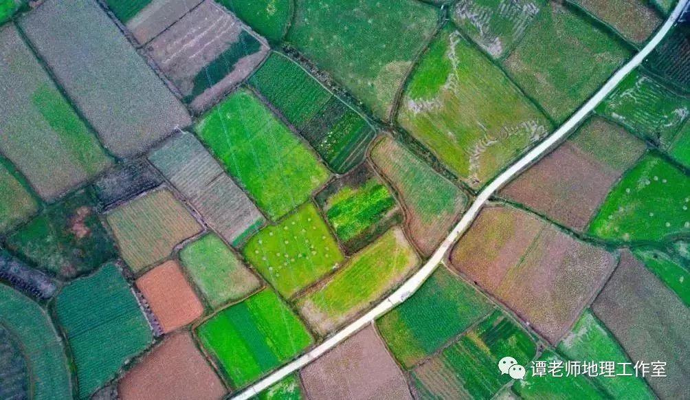 【专项突破】2020必考农业新模式(附最新农业高考题解析)