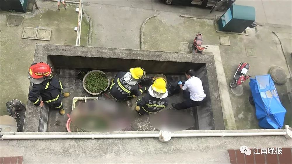 高浪嘉园一女子今晨不幸坠楼身亡,疑因患抑郁症……