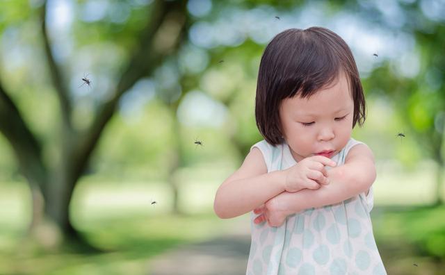 孕妇和宝宝更易招蚊子,主要是因为这3点,你中招了吗?