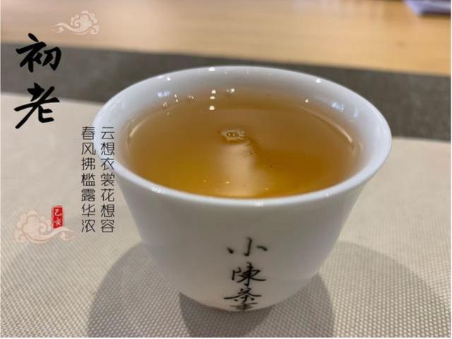 夏季如何选择适合的茶?除了白茶还有红茶、岩茶、普洱茶可选择