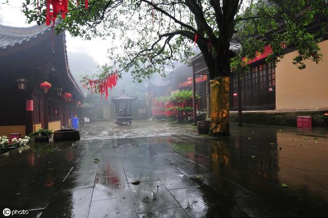 红楼隔雨相望冷,珠箔飘灯独自归. 远路应悲春晼晚,残霄犹得梦依稀.