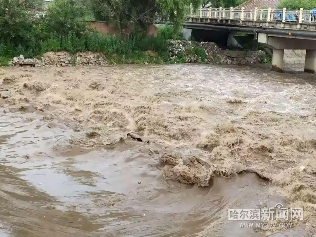 超50mm就算暴雨,这里最大降雨量达188.5mm丨凌晨大营救 尚志突发山洪珍珠山乡部分村民被困 巴彦 皮卡 被冲下河