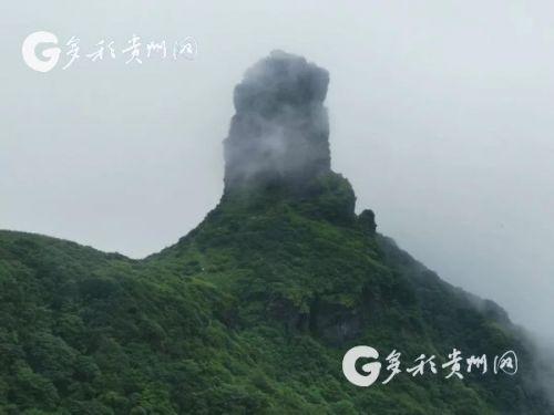 梵净山迎来夏季旅游高峰