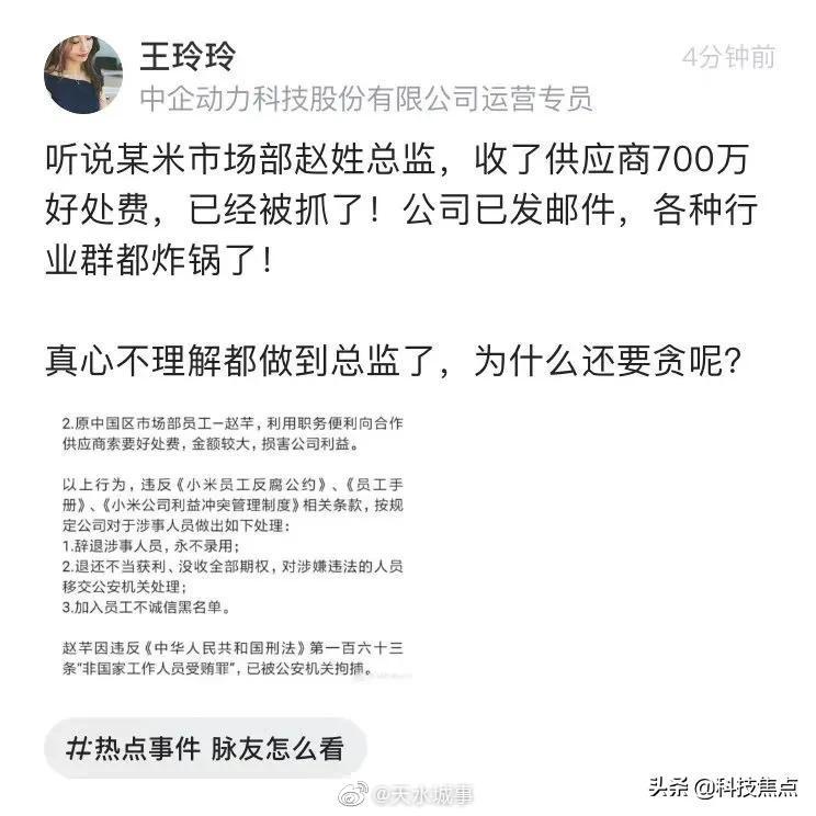 小米公司美女总监赵芊,贪污700万巨款,锒铛入狱!