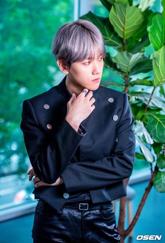 <b>EXO伯贤首张solo专辑大获成功 当之无愧的实力派音乐天才【组图】</b>