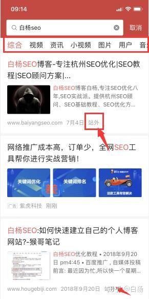 闻道seo_白杨SEO:今日头条搜索优化的机会及头条SEO怎么做?