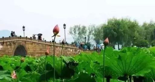 中国34个省市区文化符号景观、美食、特产、历史名人(图8)