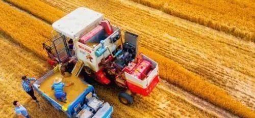 中国农业农村部:夏粮丰收 农产品进口来源明显变化