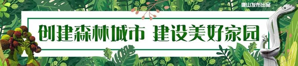 """为家乡点赞!唐山打造资源型城市转型的""""绿色动能""""!"""